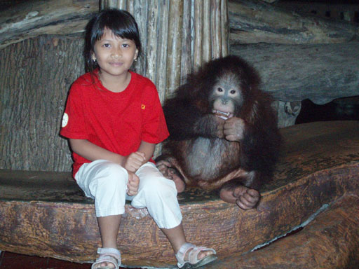 bb-at-baby-zoo-taman-safari
